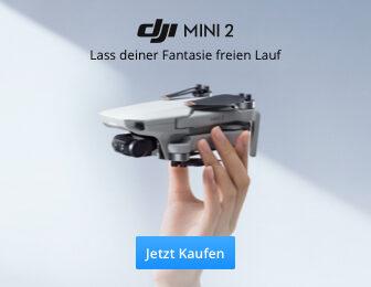 DJI Mini 2 online kaufen